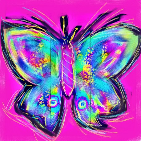 Electric Butterfly on Pink