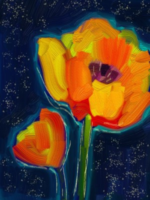 Midnight Poppies