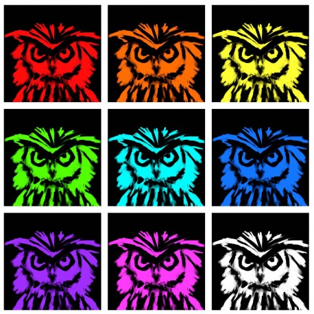 Angry Owls Collage