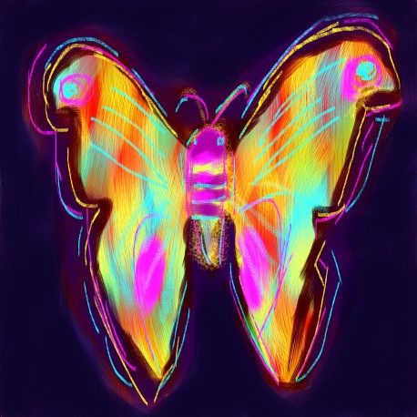 Butterfly Magic I